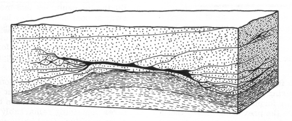 Fig. 4: vein-like coal seam, Summerset, Ohio (Corliss 1989, 189)